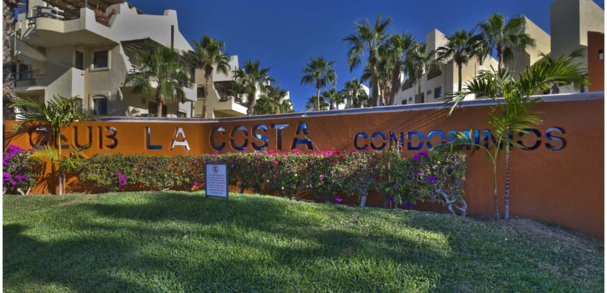 Punta Palmilla, Casa Artista